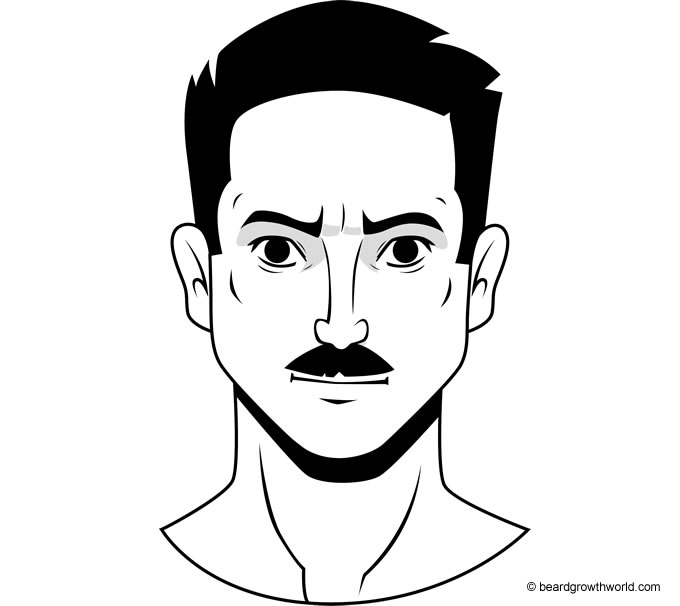 Copstash Standard Mustache Style