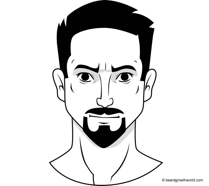 VanDyke Beard Style