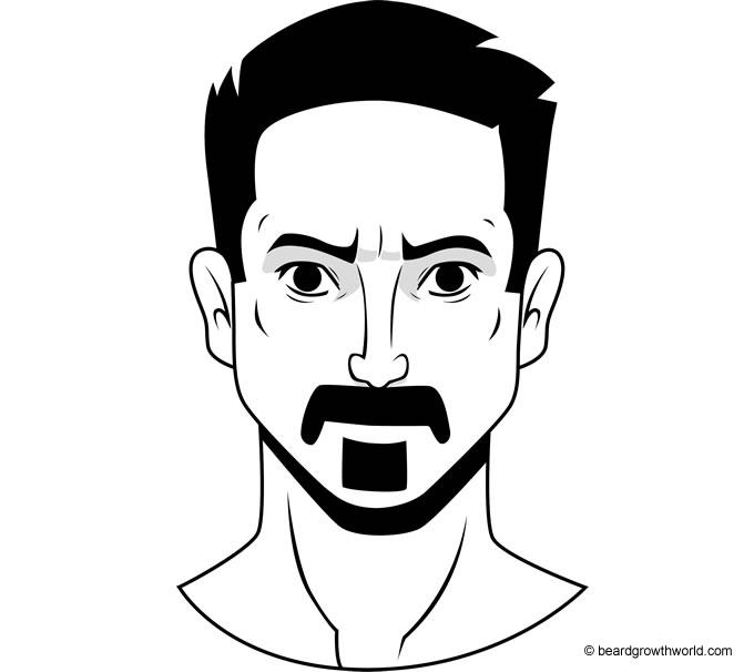 Zappa Beard Style